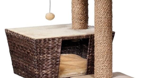 europet bernina kratzbaum top 3 infos neu. Black Bedroom Furniture Sets. Home Design Ideas